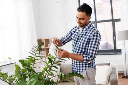 indian man cleaning houseplants leaves at home Imagens