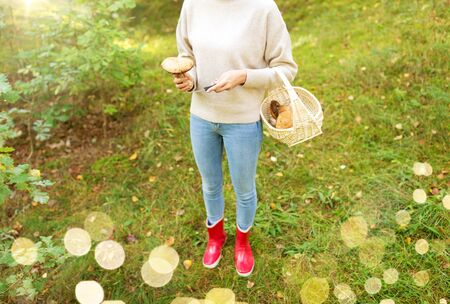 Season, nature and leisure concept - Young woman with wicker basket and knife picking mushrooms in forest