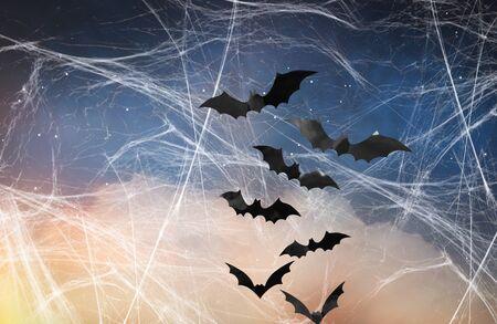 black bats over starry night sky and spiderweb Stockfoto - 129137418