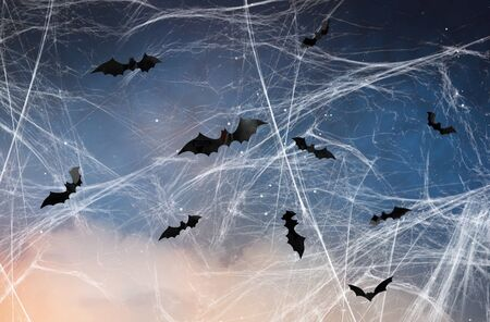 black bats over starry night sky and spiderweb Standard-Bild - 129089731