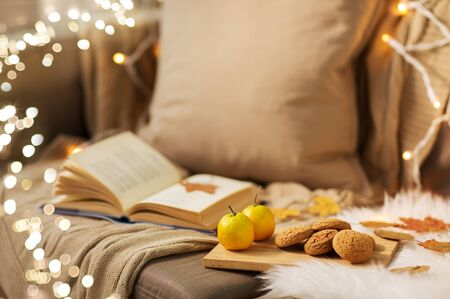lemons, book, almond and oatmeal cookies on sofa