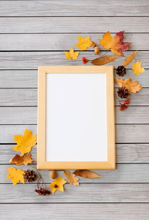 autumn fruits and picture frame or whiteboard Banco de Imagens - 130599036