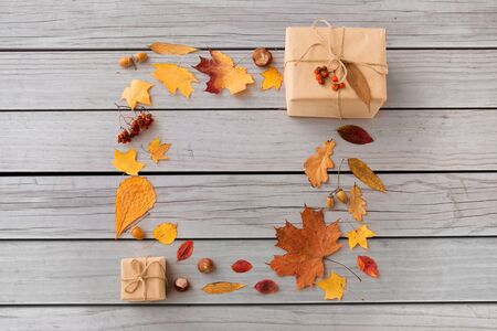 frame of gifts, autumn leaves and rowanberry
