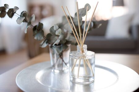 aroma reed diffuser and branches of eucalyptus