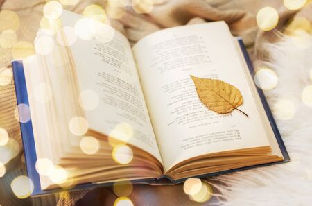 Book with autumn leaf on blanket at home