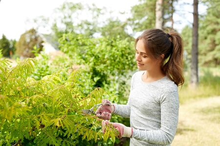 woman with pruner cutting bushes at summer garden