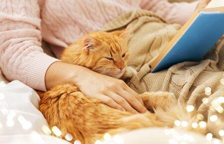 koncepcja zwierząt domowych, hygge i ludzi - zbliżenie czerwonego pręgowanego kota i właścicielki czytającej książkę w łóżku w domu