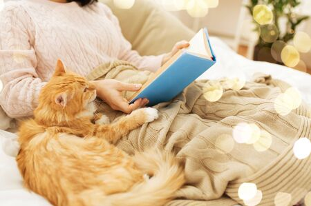 hygge, literature and people concept - red tabby cat and female owner reading book in bed at home