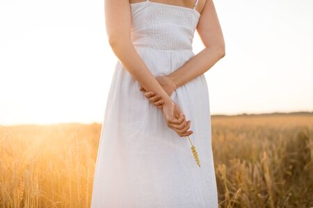 harvesting, nature, agriculture and prosperity concept - young woman in white dress on cereal field holding ripe wheat spickelet in her hand