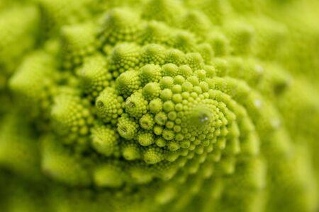 close up of romanesco broccoli