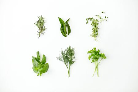 culinary, seasoning and organic concept - different greens, spices or herbs on white background
