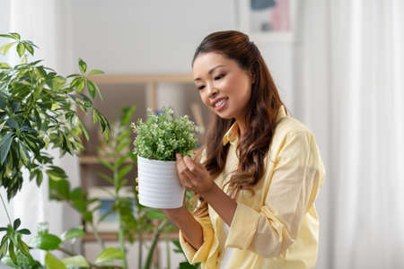 happy asian woman with flower in pot at home