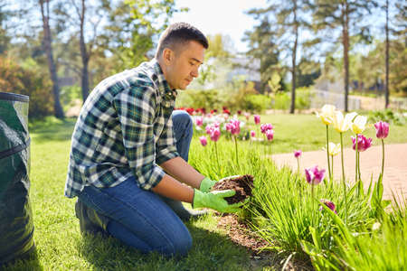 man pouring soil to flowers at summer garden
