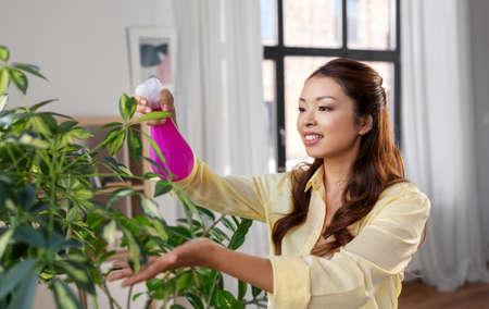 asian woman spraying houseplant with water at home Zdjęcie Seryjne