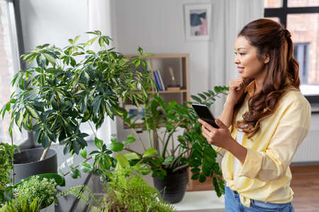 asian woman with smartphone and flowers at home