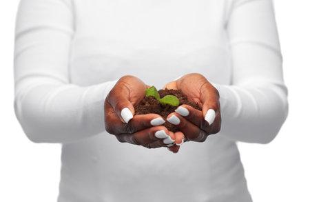 woman holding plant growing in handful of soil Reklamní fotografie