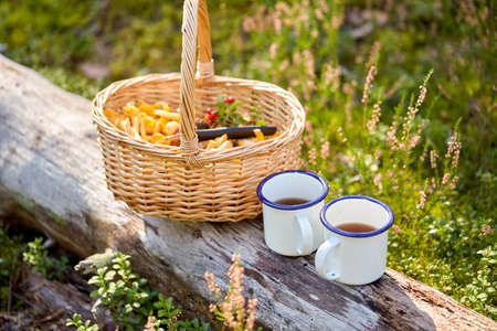 mushrooms in basket and cups of tea in forest