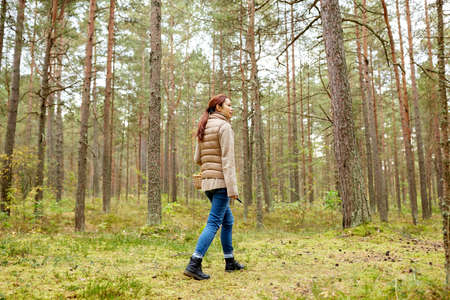 asian woman picking mushrooms in autumn forest