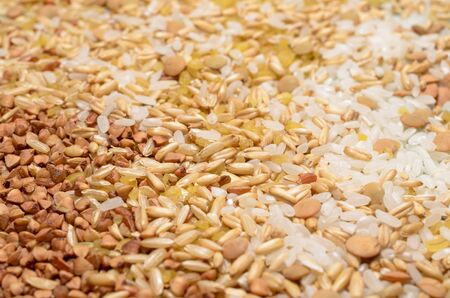 Various seeds and grains close up, food background. 스톡 콘텐츠