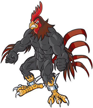 Vector cartoon clip art illustration of an angry muscular rooster or gamecock or chanticleer mascot with spurs and a semi-realistic head. Illustration
