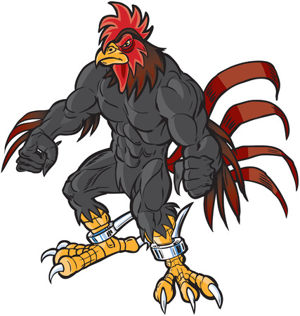 Vector cartoon clip art illustration of an angry muscular rooster or gamecock or chanticleer mascot with spurs and a determined scowl. Illustration