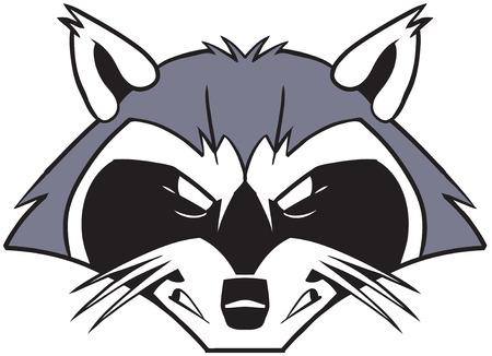 Vector cartoon illustraties illustratie van een ruwe taai en betekenen op zoek wasbeer mascotte hoofd of gezicht.