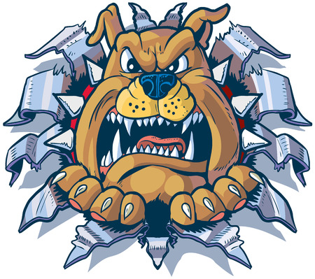 spiked: Vector cartoon clip art illustration of an angry bulldog with a spiked collar ripping, punching, or tearing through aluminum or chrome steel sheet metal. Illustration