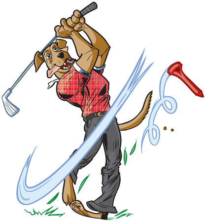 swinging: Vector cartoon clip art illustration of an anthropomorphic brown dog mascot wearing a shirt and pants swinging a golf club with a tee flying away. Illustration