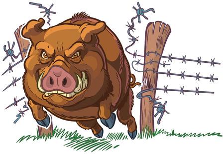 Vector ilustración de dibujos animados clip art de una mascota de cerdo o cerdo o jabalí duro y malo estrellarse a través de una valla de alambre de púas. El personaje y el fondo están en capas separadas.