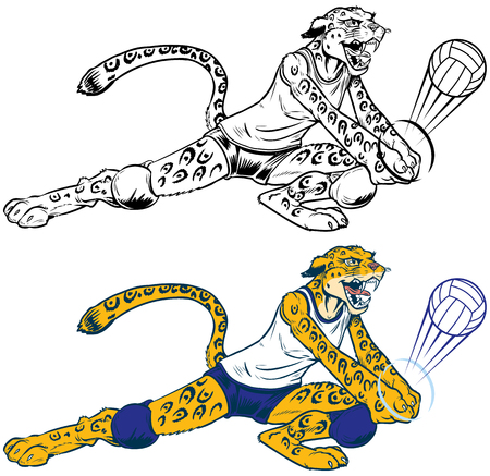 Cartoon vector clip art illustration of a lady wildcat, leopard, or jaguar volleyball player mascot doing a dig. Character, ball, and uniform are on separate layers. In color and black and white. Illusztráció