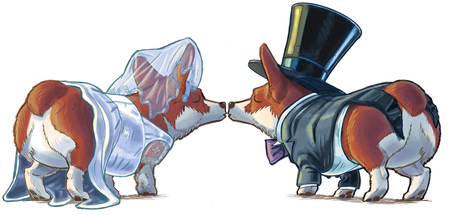 Cartoon clip art illustration of a Welsh Corgi dog bride and groom kissing. They wear a tuxedo with tophat and tails, and a wedding gown or dress and veil, showing their signature fluffy rear ends. Stock Photo