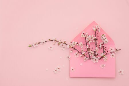 Living pink pastel background made of spring cherry blossom flowers and envelop, copy space. Natural floral framework background. Top view, flat lay. Valentines day, Womans day, Mothers day, birthday Banco de Imagens