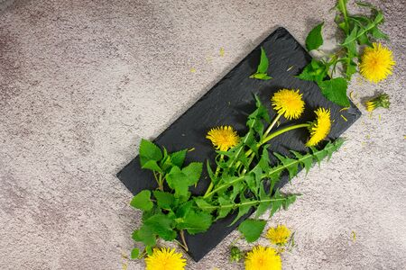 Spring picked fresh food nettle leaves, dandelion. Healthy wild spring organic, bio vitamins from nature on black stone background. Flat lay, copy space for tex, logo