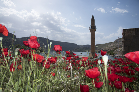 The mosque and lake among the red lilies Stock fotó