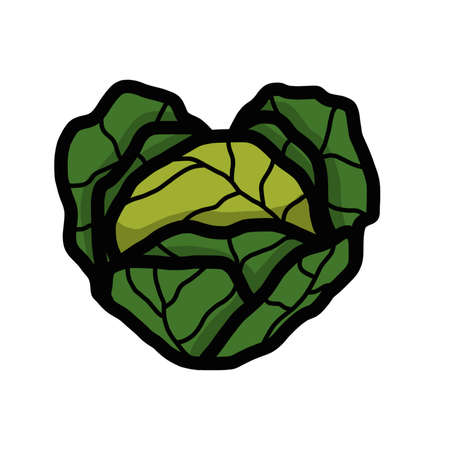 Heart shaped cabbage