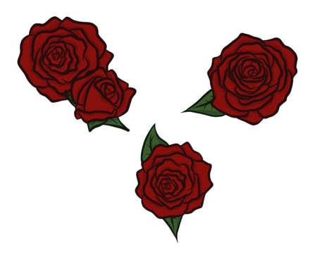 Roses Isolated Set Çizim