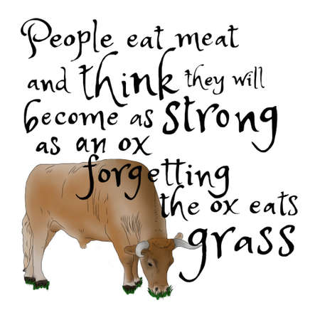 Strong as an ox quote
