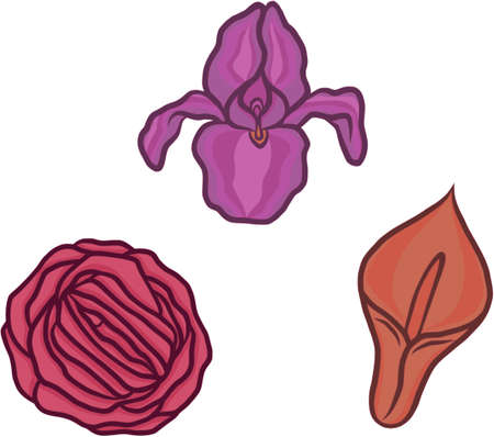 Vagina flowers  set