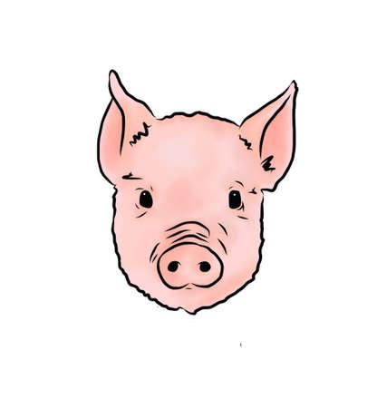 Cute Pig Illustration Stok Fotoğraf