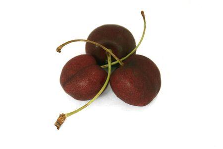 nestled: Three cherries nestled together silo Stock Photo