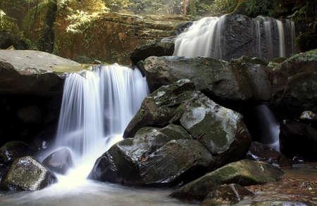 Waterfall in a Borneo Jungle, Kionsom waterfall Kota Kinabalu Sabah Malaysia photo