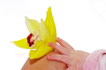 Mothers and babys hand with flower ùà orchid photo