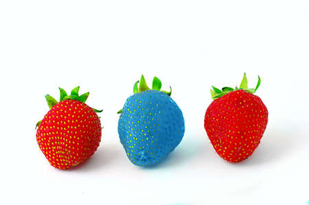 one blue strawberrie  and two red ripe strawberries on a white backgroud photo