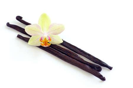 flor de vainilla: Orqu�dea con vainas de vainilla en el fondo blanco