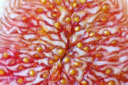 purgative:  Fresh figs close up. Fig background. Stock Photo