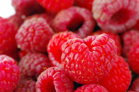 close up of fresh raspberry crop