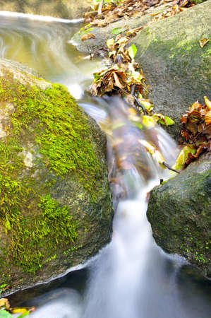 The beautiful stream in forest, autumn, long exposure  photo