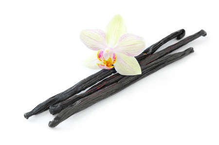 Orchid with vanilla beans on white background