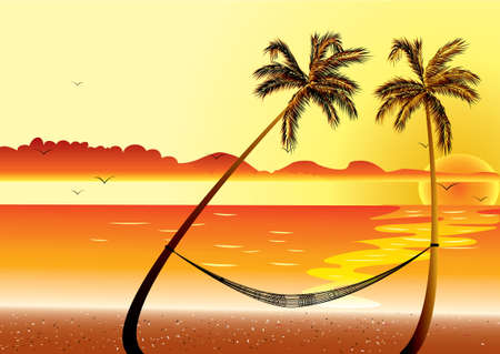 shoreline: Sunset at Beach Shore and hammock with palm
