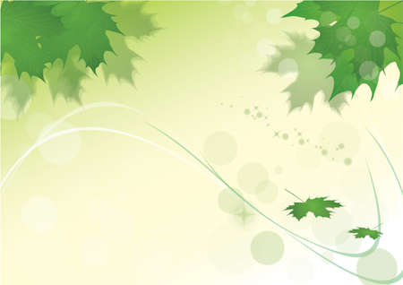 green leaves background with green leaf of maple Stock Vector - 7026585